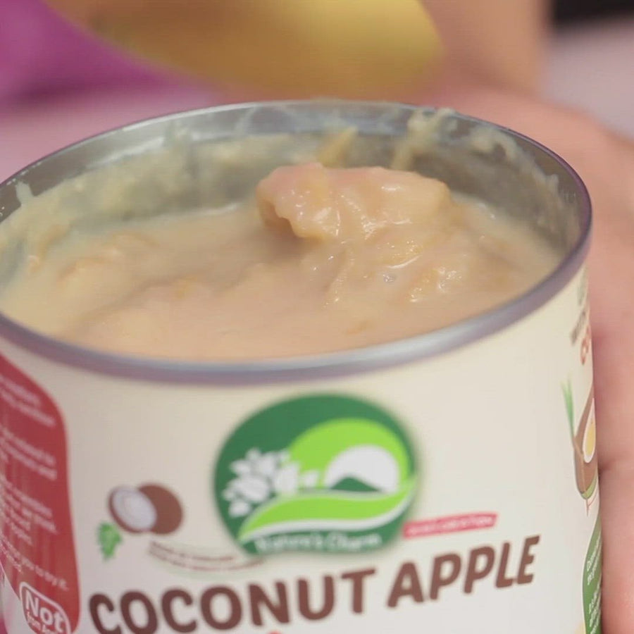 Nature's Charm Coconut Apple Pudding (270g)