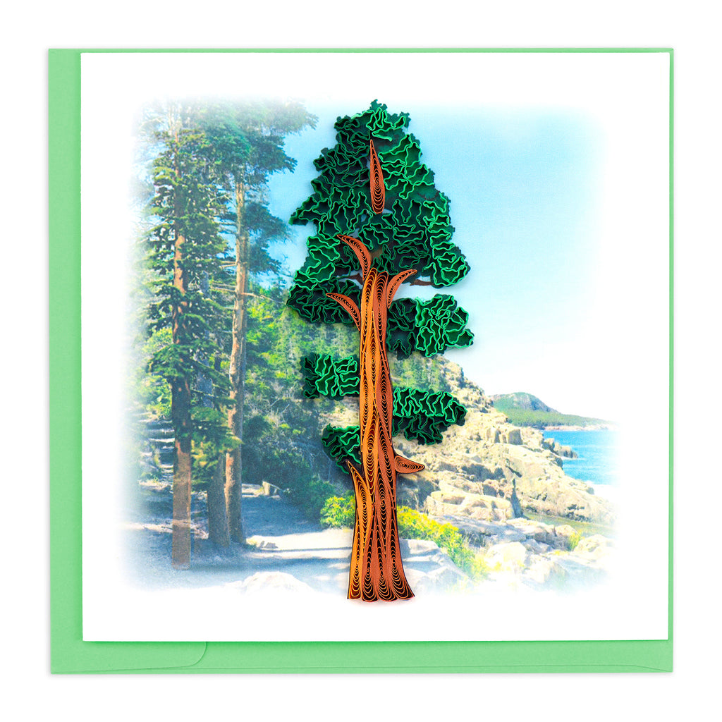 BL1193 Quilling Card – Redwood Tree