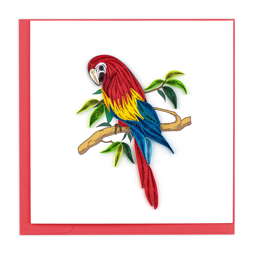 BL905 Quilling Card – Parrot