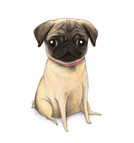 'Fauna' Puppy Sophie Corrigan x Cupcake Pug Co collaboration A4 print