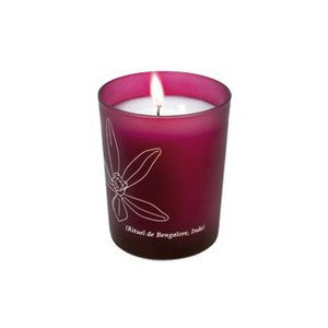 Phyto-Aromatic Candle Bangalore