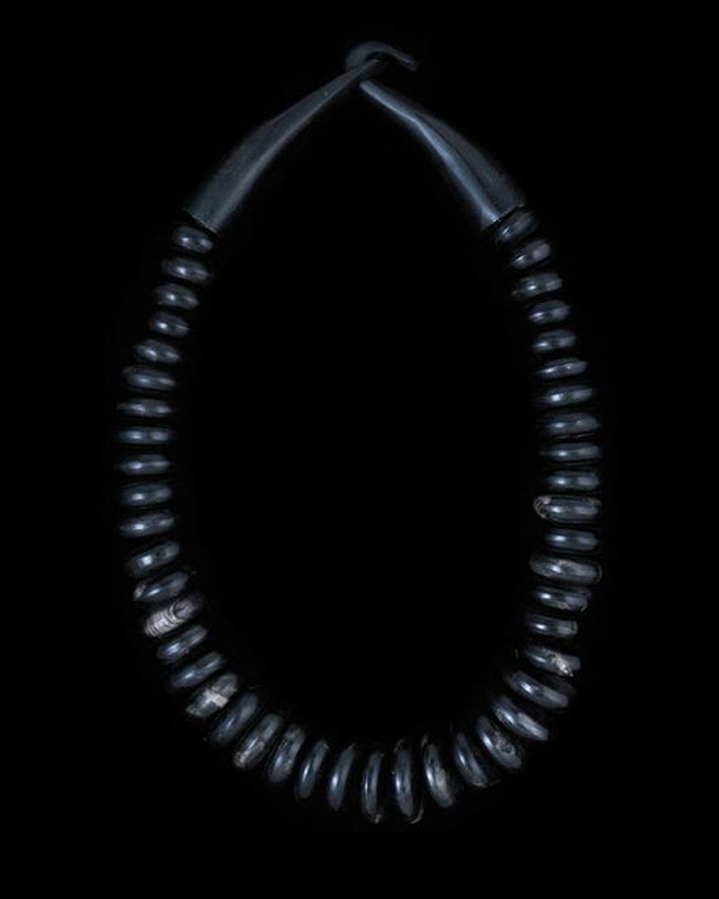 Large Horn Necklace