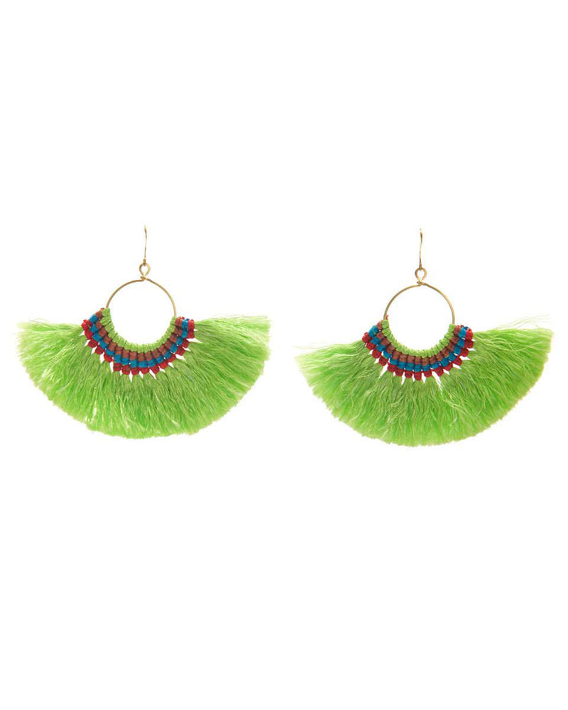 Large Parrot Earrings