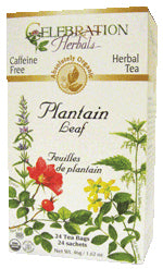 Plantain Leaf Organic 24 BAG