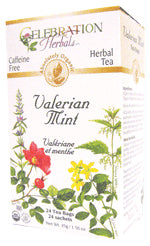 Valerian Mint Tea Organic 24 BAG