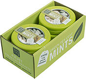Bombay Chai Green Tea Mints 6-60PC