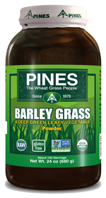 Barley Grass Powder 24 OZ