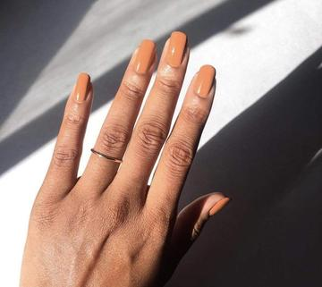 Nude Collection Set (Traditional or Gel)