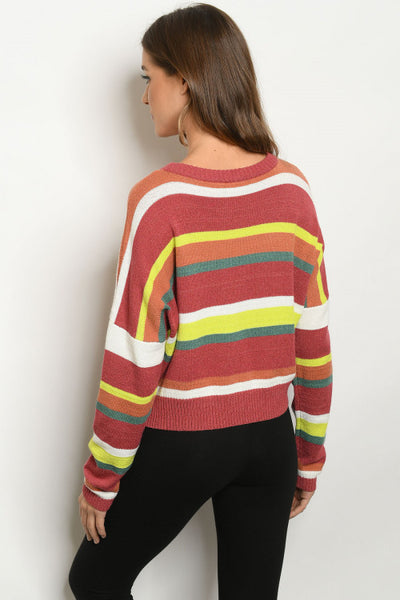 Multi Striped Sweater back view