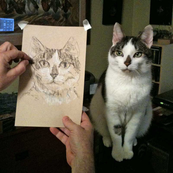 Cats are great artist models!!