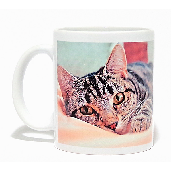 Personalised Photo Mug - All You Need Is Love & A Cat Called