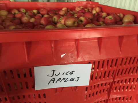 320kg BIN Organic Juicing Apples