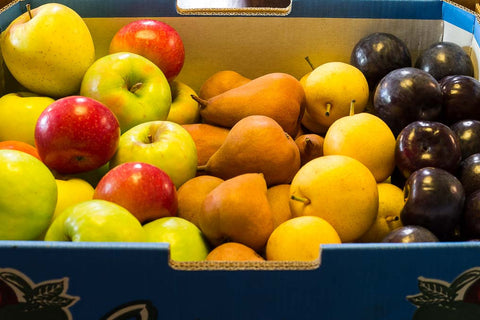 Organic Fruit 8kg Box Grade 1