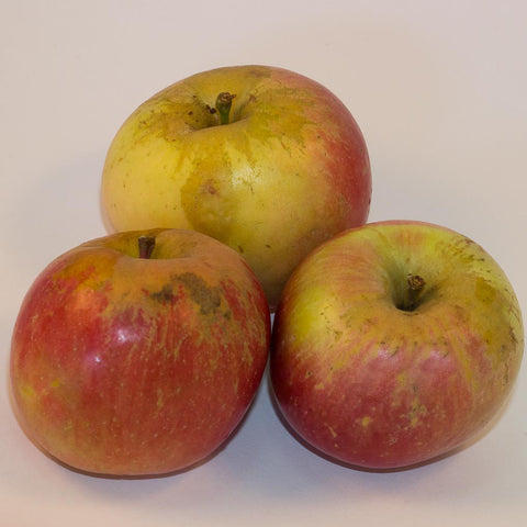 12kg BOX Organic 'Fuji' Apples Grade 2