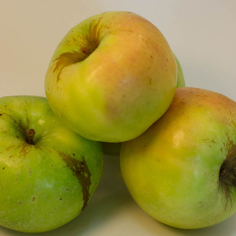 12kg Box Organic 'Granny Smith' Apples Grade 2