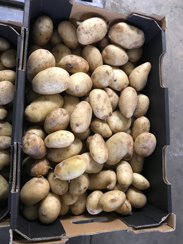 15kg BOX Potatoes Grade 2
