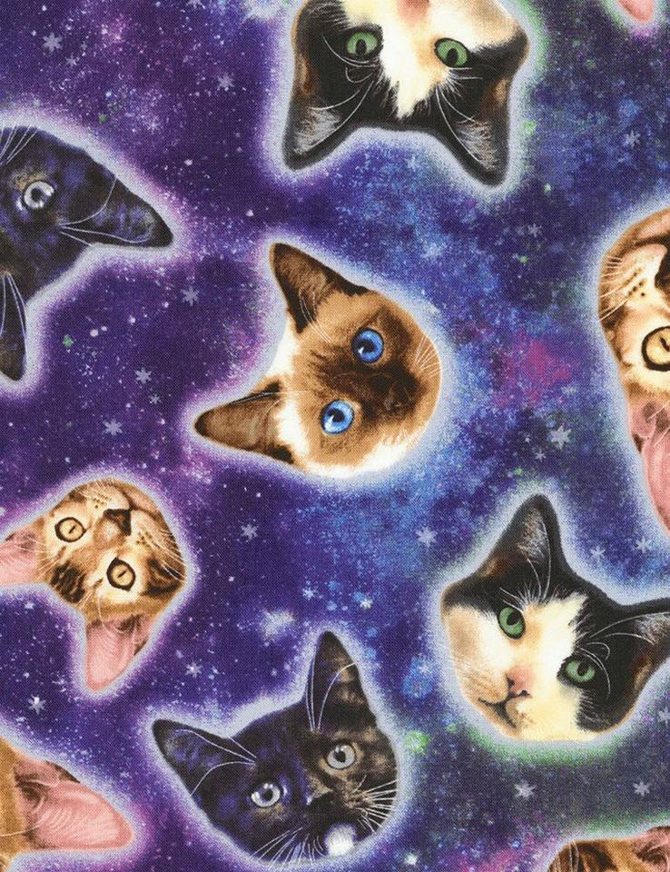 Galaxy Cats Custom Order