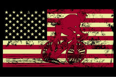 Male Cyclist Silhouette On The American Flag