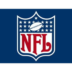 NFL National Football League Logo