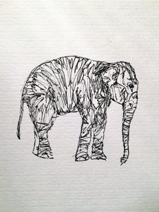 Hand drawn Greeting Card - Elephant - eDgE dEsiGn London