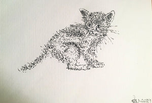 Hand Drawn Greeting Card - Kitten 1 - eDgE dEsiGn London