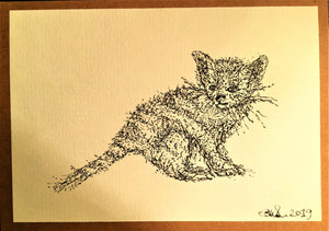Hand Drawn Greeting Card - Kitten 2 - eDgE dEsiGn London