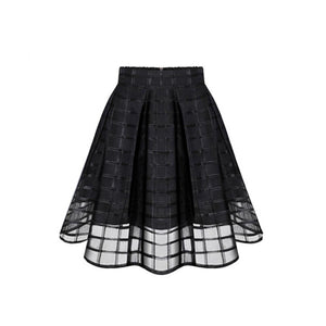 Transparent Grid Skirt