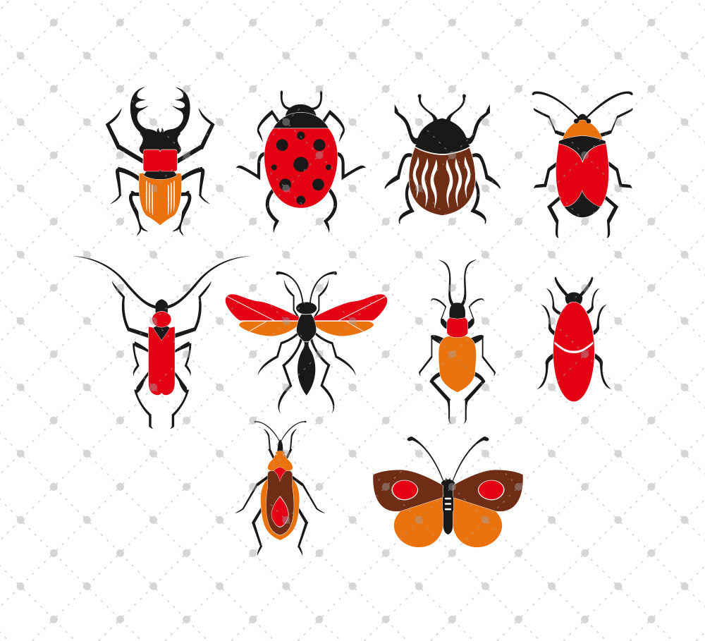 SVG files for Cricut Bugs and Insects SVG Cut Files Silhouette Studio3 files PNG clipart free svg by SVG Cut Studio