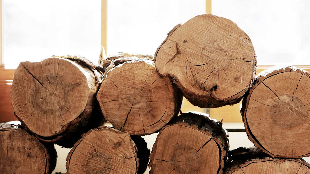 Types of woods for furniture Holly Tree Wood Types Of Wood Used In Mid Century Furniture Everythingbutthedog The Different Types Of Wood Used In Mid Century Furniture