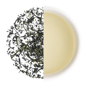 Grüner Tee - Organic Hon Gyokuro Kusanagi - Friends of Tea