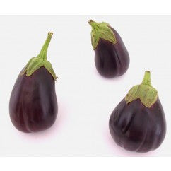 Eggplant Black Beauty, Heirloom - Certified Organic