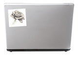 2 x Sketched Rose Vinyl Stickers Travel Luggage #10231