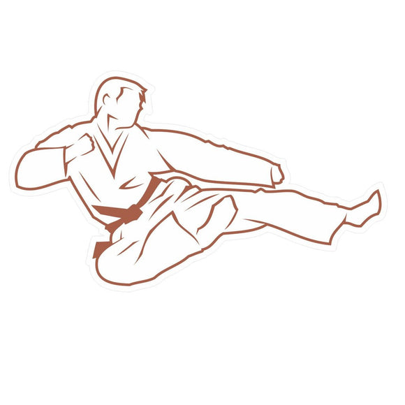 2 x Karate Brown Belt Vinyl Sticker #4177