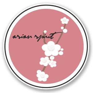 2 x Asian Spirit Vinyl Sticker #4610