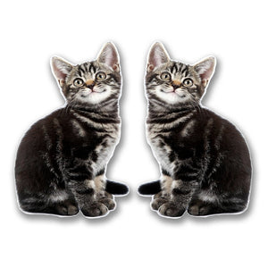2 x Smiling Kitten Cat Vinyl Sticker #6300