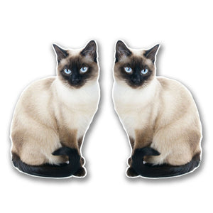 2 x Cat Vinyl Sticker #6301