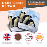 Great Coasters (Set of 2) Square / Glossy Quality Coasters / Tabletop Protection for Any Table Type - Funny Penguins Bird Snow Arctic  #8102