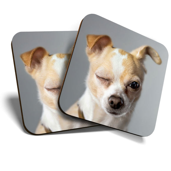 Great Coasters (Set of 2) Square / Glossy Quality Coasters / Tabletop Protection for Any Table Type - Funny Winking Chihuahua Dog Puppy  #8232