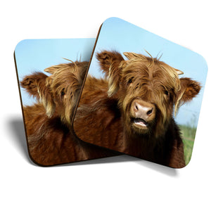Great Coasters (Set of 2) Square / Glossy Quality Coasters / Tabletop Protection for Any Table Type - Ginger Highland Cow Scotland  #8234