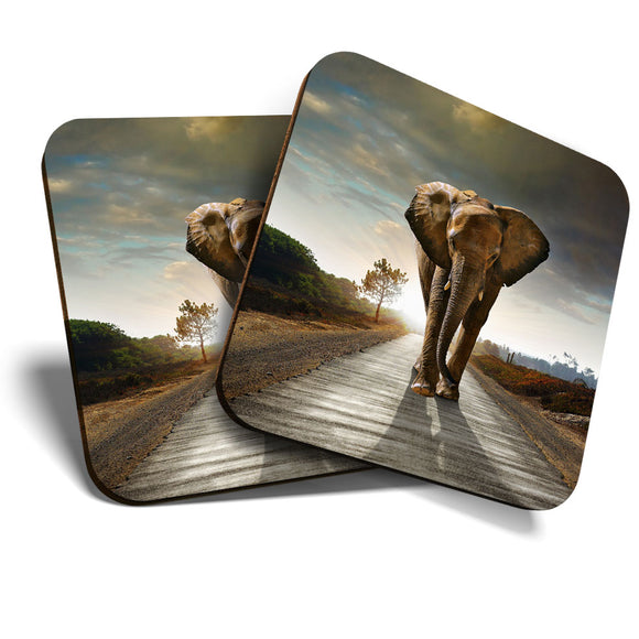 Great Coasters (Set of 2) Square / Glossy Quality Coasters / Tabletop Protection for Any Table Type - Majestic Wild Elephant Africa  #8240