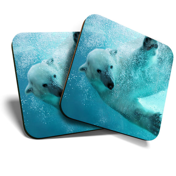 Great Coasters (Set of 2) Square / Glossy Quality Coasters / Tabletop Protection for Any Table Type - Polar Bear Ocean Sea Arctic Wild  #8242