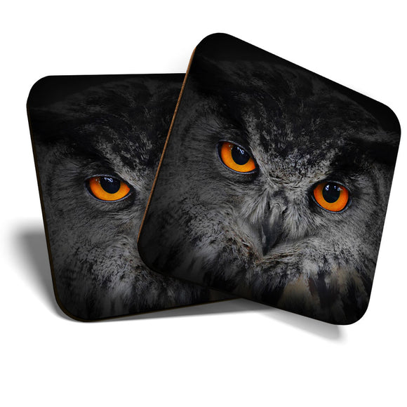 Great Coasters (Set of 2) Square / Glossy Quality Coasters / Tabletop Protection for Any Table Type - Beautiful Owl Eyes Bird Owls  #8252