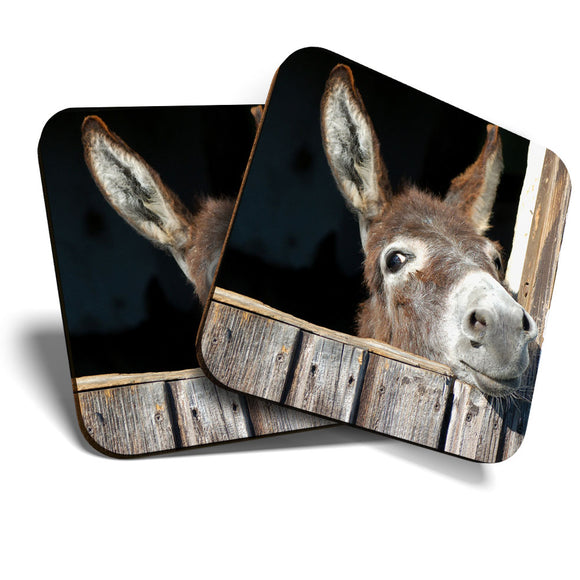 Great Coasters (Set of 2) Square / Glossy Quality Coasters / Tabletop Protection for Any Table Type - Funny Cute Donkey Animal Horse Wild  #8260