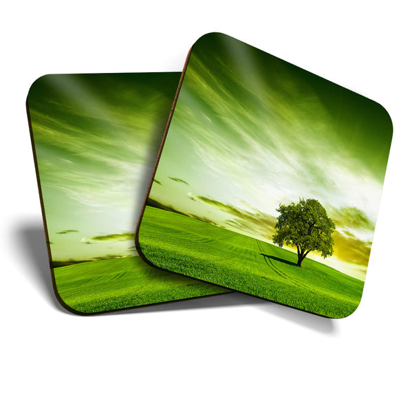 Great Coasters (Set of 2) Square / Glossy Quality Coasters / Tabletop Protection for Any Table Type - Beautiful Green Field Tree Nature Sunset  #8264