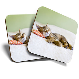 Great Coasters (Set of 2) Square / Glossy Quality Coasters / Tabletop Protection for Any Table Type - Awesome Sleeping Kitten Cat Animals  #8265