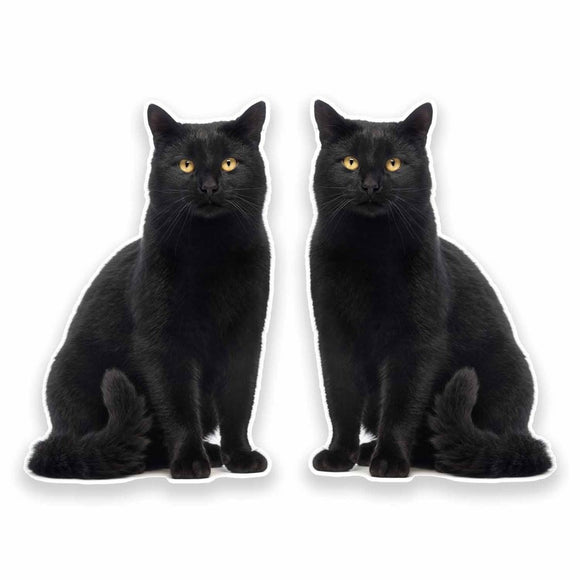 2 x Black Cat Vinyl Sticker #9641