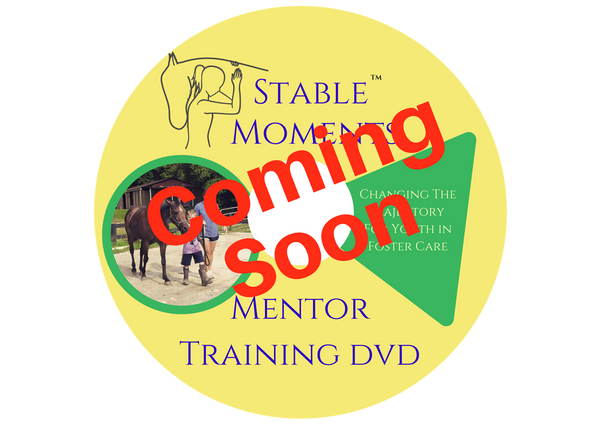 Mentor Training DVD