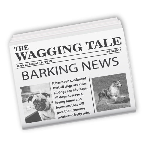 The Wagging Tale - National Dog Day and other Top 5 Dog Stories 8-2019