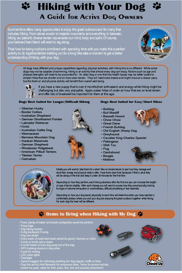 hiking with your dog infographic
