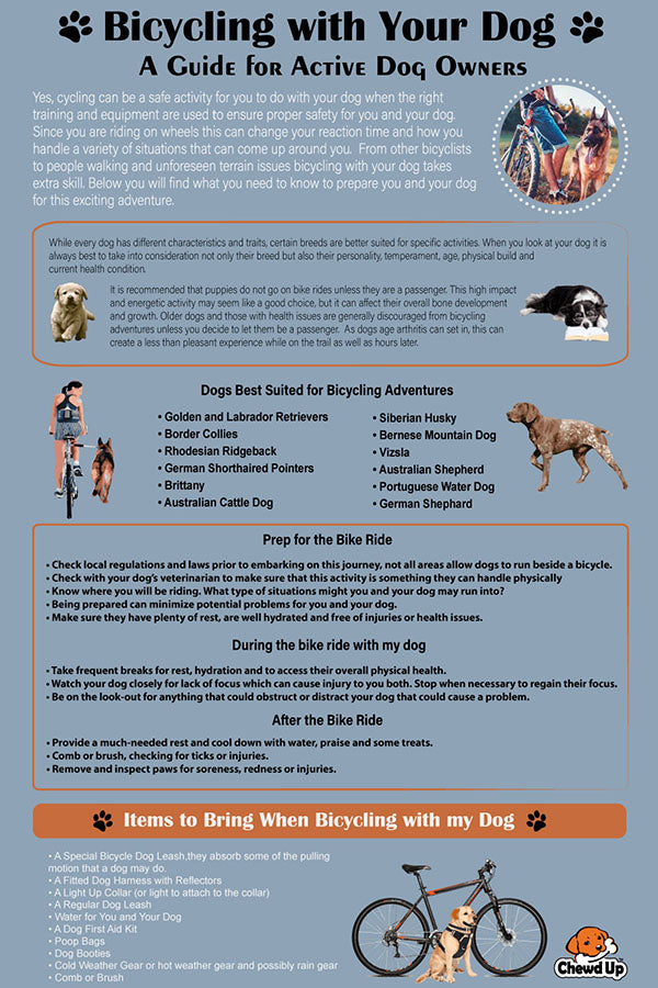 Chewdup Cycling with your Dog Infographic